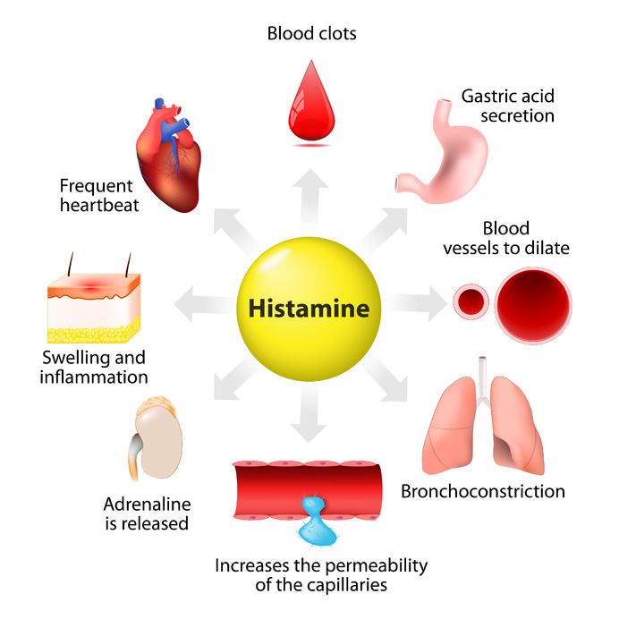 Histamine –  Do you have too much of a good thing?